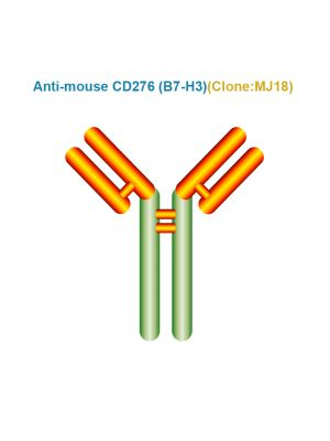 Anti-mouse CD276 (B7-H3)