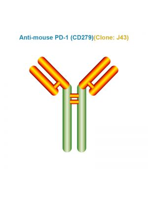 Anti-mouse PD-1 (CD279)